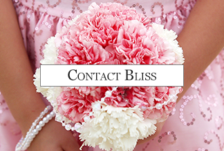 Contact Bliss