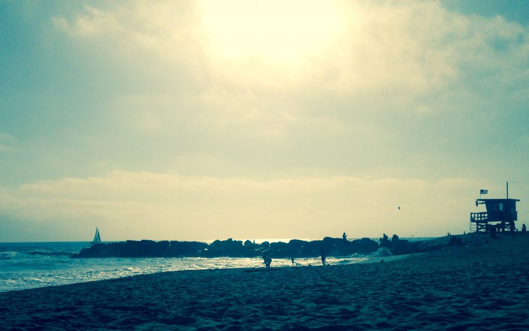 Travel Memories…..Venice Beach